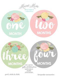 Items similar to Baby Monthly Milestone Stickers- 12 Stickers, Floral Monthly Baby Stickers, Milestone Stickers, Monthly Baby Stickers, Baby Monthly Stickers on Etsy Coreldraw, Cumpleaños Diy, Mini Albums, Baby Month Stickers, Baby Growth, Floral Baby Shower, Birthday Diy, Vintage Roses, Vintage Floral