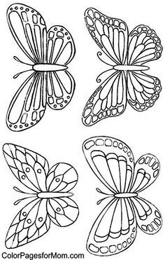 Color Pages for Mom: Butterfly Coloring Page 34 -- Butterfly line drawing #insect: