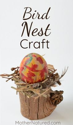 Beautiful bird nest craft for kids!