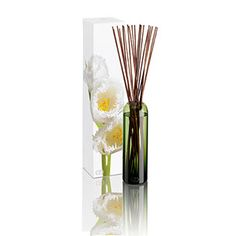 DayNa Decker Leila Diffuser - Grapefruit, Bergamot, Dewberry, Lemon Flower & Amber Musk
