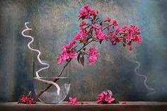 Florals Art - Fleur  by Manfred Lutzius