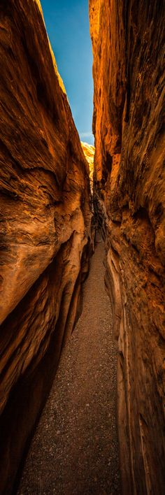 ✯ Little wild horse slot canyon near Goblin Valley State Park Utah :: Photography by Thomas OBrien ✯