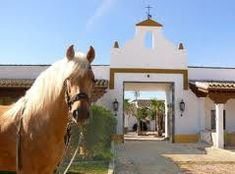 1000 images about cortijos andaluces on pinterest - Cortijos andaluces encanto ...