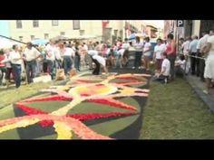 Alfombras de La Orotava 2008