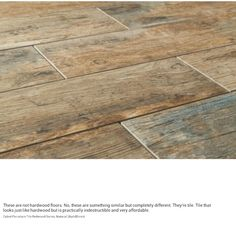 "Ceramic Tile ""wood"" floor. This would hold up great to the dog traffic!                                                                                                                                                     More"