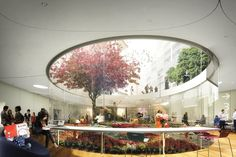 Stewart Hollenstein and Colin Stewart Architects' competition-winning proposal for the Green Square Library and Plaza includes a sunken garden at the heart of the library