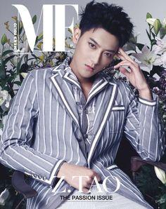 tao, exo, and kpop image Kyungsoo, Chanyeol, Panda Bebe, Tao Exo, Huang Zi Tao, Kung Fu Panda, Xiu Min, Kris Wu, Top 5