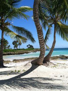 Back here, por favor!  Punta Cana, Dominican Republic