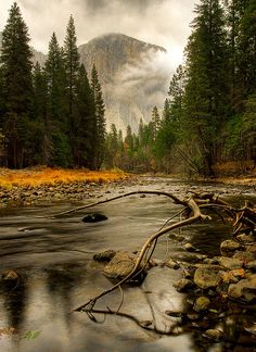 Yosemite National Park, California, USA.