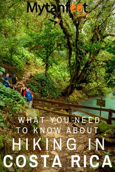 Great Hikes in Costa Rica For the Outdoor and Hiking Lover Travel Advice, Travel Tips, Travel Guides, Living In Costa Rica, Costa Rica Travel, Group Travel, Discount Travel, Amazing Destinations, Trip Planning