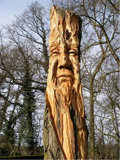 Amazing old tree in the garden of The Old Sun House, Pednor, Chesham, Buckinghamshire, Open to the public under the National Garden Scheme. Sun House, Tree Carving, Tree Sculpture, Life Is Beautiful, Beautiful Places, Garden Art, Garden Ideas, Fruit Trees, Tree Art