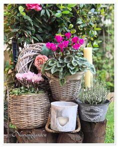 Outdoor Planters, Garden Planters, Pots, Porch Garden, Flower Quotes, Fall Decor, Autumn Decorations, Green Plants, Autumn Inspiration