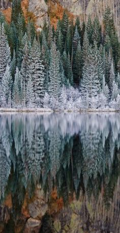 Bear Lake in Rocky Mountain National Park, Colorado | Nature Board