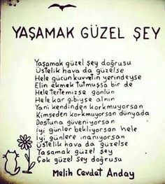 ~ Melih Cevdet Anday