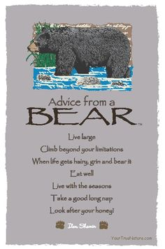 Spirit animal totem advice from a bear. Advice Quotes, Life Quotes, Advice Cards, Nature Quotes, Bear Totem, Animal Spirit Guides, Bear Spirit Animal, Wood Badge, Animal Totems