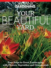 Easy steps to help you create beautiful landscapes with flowers, vegetables, and ornamentals. Turn your dreams into a plan; turn your plans into a successful organic landscape.   Free downloadable PDF from Organic Gardening