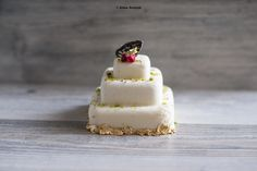 Raw vegan - delicate white chocolate minicake