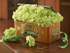 Fill an interesting and appropriately themed container, such as the old Bailey's tin that I used here, with green carnations that are cut short and ready to be adorned with a ribbon or pinned on a lapel. The carnations I've used are a natural green variety called Prado. It is one of my favorite flowers, because of its beautiful pale green color and its availability year round.