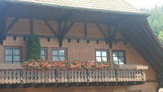 Feldberg, Black Forest,  Germany