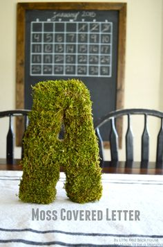 Moss Covered Letter- easy and fun home decor! Tutorial on madetobeamomma.com