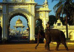 Mysore Palace - Royal Elephant