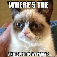 The Anti-Super Bowl Party - 10 Hilarious Grumpy Cat Super Bowl Memes | Complex