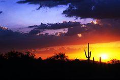 arizona sunset in scottsdale, arizona