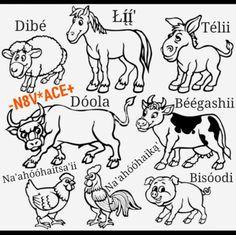 Farm animals in Navajo Native American Costumes, Native American Images, Native American History, Native American Indians, Native Americans, Navajo Language, American Sign Language, Navajo Words, Navajo Culture
