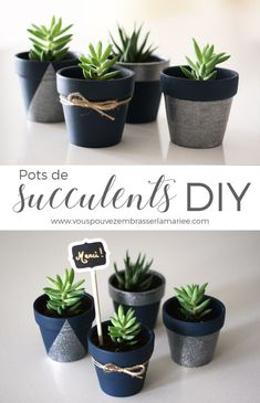 I think I just found the perfect guest favor! These adorable DIY potted succulent pots are insanely cute, easy to do and they have a trendy and eco look I am in love with. The tutorial is very clear. (Diy Crafts For Popular Types of Succulent Succulent Wedding Favors, Succulent Centerpieces, Succulent Terrarium, Succulents Garden, Painted Plant Pots, Painted Flower Pots, Suculentas Diy, Decoration Plante, Deco Floral