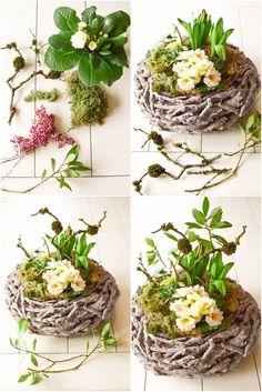 DIY Frühlingsdeko selber machen Frühjahrsdeko für Tisch. Dekoidee mit Korb Christrosen Hyazinthen Primeln Moos und natürlicher Deko #DIYcrafts