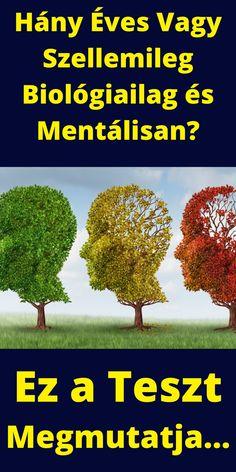 #boilógiai #életkor #teszt #pszichológia