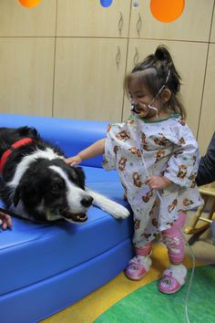 Avianna, a patient at Renown Children's Hospital, shows Pet Therapy Dog Jesse around the children's therapeutic playroom.