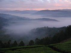 Rwanda Photos - Featured Images of Rwanda, Africa - TripAdvisor