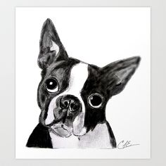 Boston Terrier Art Print by Gooberella - $15.60
