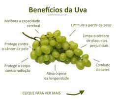 Guia Completo: Frutas, Verduras e a Sua Saúde | Saúde - TudoPorEmail