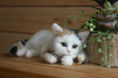 Needle felted cat - so tiny and cute! On Yahoo Japan auctions.