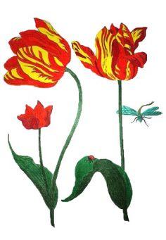 Twee tulpen met insecten, ingekleurd door Hetty.