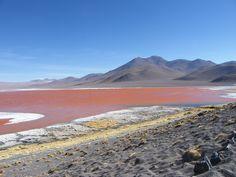 Riserva Edoardo Avaroa Laguna Colorada