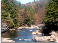 Swallow Falls State Park in western MD near Deep Creek - great camping and Muddy Creek Falls