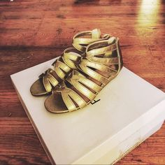 Gladiator Small Heeled Sandals These eye catching golden gladiators sandals are given additional personality with its slight heel. Perfect for this upcoming summer and PLUS completely in style! Only worn a handful of times. Like brand new.  ***ALSO FOUND ON Ⓜ️ ERCARI @shopcherrypop W/ FREE SHIPPING!! Sole Society Shoes Sandals