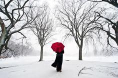 Beautiful Brooklyn Blizzard | aspiring photographer Navid Baraty