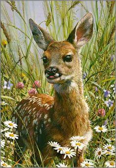 Carl Brenders - Spring Fawn