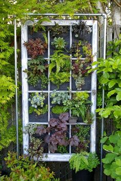 Dishfunctional Designs: Eclectic Bohemian Garden Spaces - Old window frame for hanging planters.