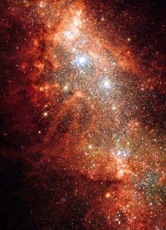 Supernova Bonanza in Nearby Galaxy Carina Nebula, Orion Nebula, Andromeda Galaxy, Astronomy Stars, Space And Astronomy, Milky Way Stars, Nebula Tattoo, Telescope Hubble, Nebula Wallpaper