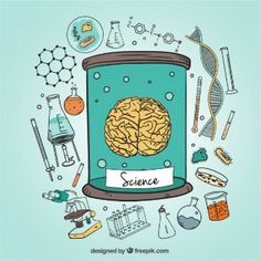Vector Fisica More than one million free vectors, PSD, photos and free icons. All rec . Science Icons, Mad Science, Science Art, Science Doodles, Science Classroom, Science Education, Brain Vector, Chemistry Art, Science Illustration