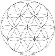 Ausmalbilder Ausdrucken Mandalas Ausmalen Mandala Vorlage Lebens Blume Des Zum Und Nrblume Des Lebens Mandala Ausm Diy Tattoo Mandala Art Glass Art
