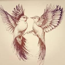 bird drawing ile ilgili görsel sonucu