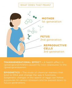 44 best mes e filhos images on pinterest pregnancy sons and the impact of toxic chemicals on generations of offspring with no direct exposure to the contaminant fandeluxe Image collections