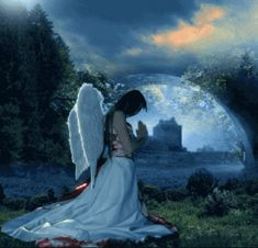 Discover & share this Angel GIF with everyone you know. GIPHY is how you search, share, discover, and create GIFs. Gifs, Central City, Perfect Boyfriend, Angels Among Us, Kittens And Puppies, Meeting New Friends, Popular Girl, Pink Butterfly, Butterflies