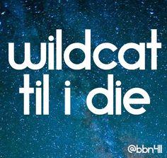 Wildcat til I die